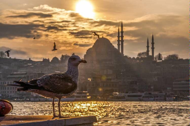столиця туреччини