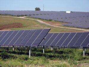 Фото: Сонячна ферма в Португалії