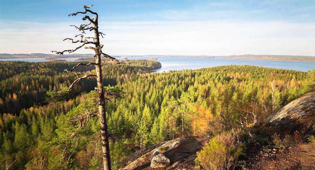 Фінські простори. Кангасниеми