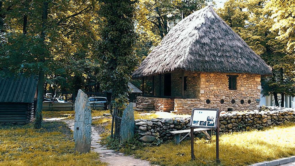 Музей Димитрія Густі