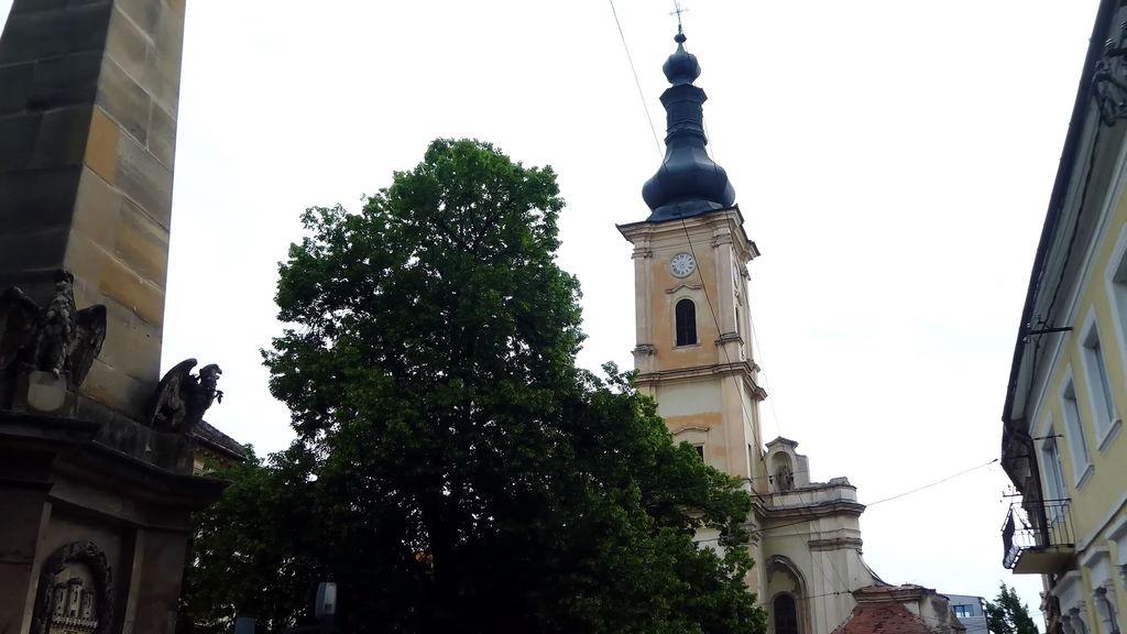 Музейна площа