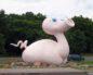 свино-качка