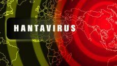 хантавірус