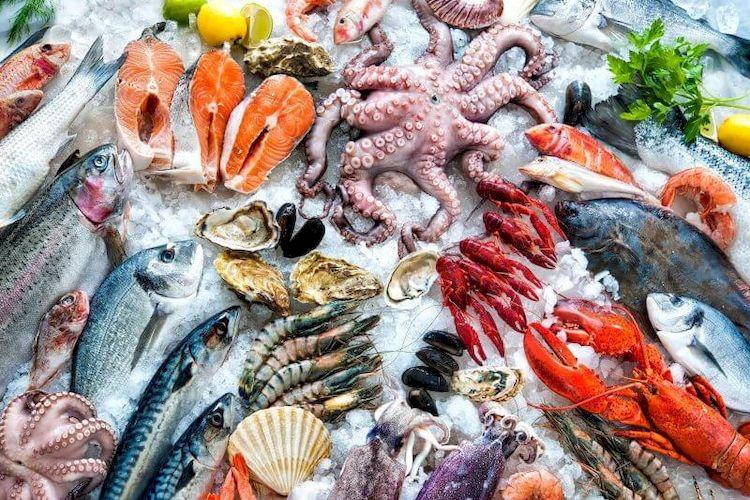 Риба, Іспанія